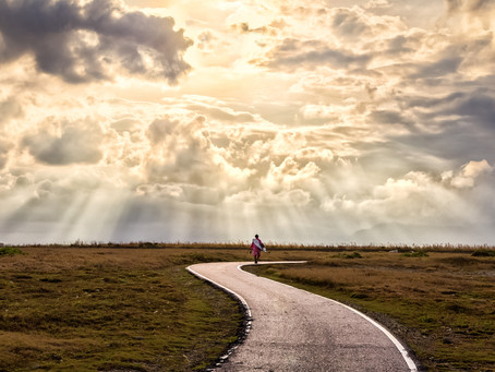 Growth Strategy Reset – What Is Your Path to Emerge Stronger?
