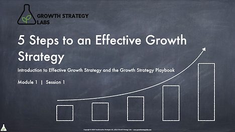 5 Steps to an Effecitve Growth Strategy