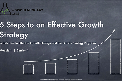 Pre-Order: 5 Steps to an Effective Growth Strategy