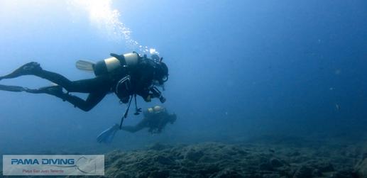 Diver 1.png