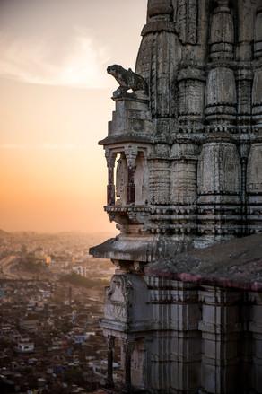 Monkey Temple , Jaipur , India