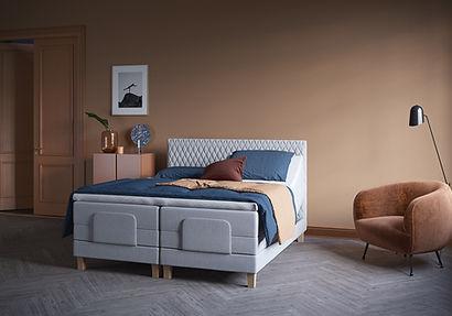 119843 733 _ 532 Adjustable bed.jpg