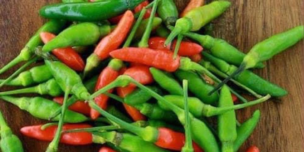 Fresh Chilli 🌶 PYO