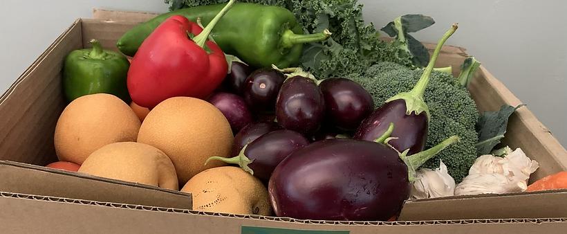 Veggies & Fruits Box