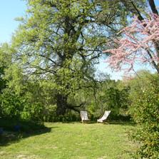 mas Boudeissoun jardin