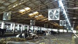 """60 db. 42"""" ventilátor felszerelése"""