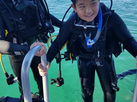 골드코스트한달살기 장점 : 스쿠버다이빙 자격증