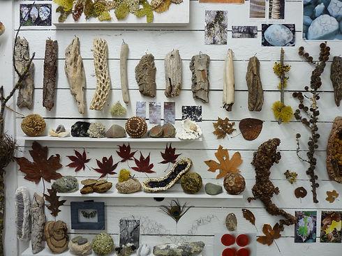 Nature Photo.JPG