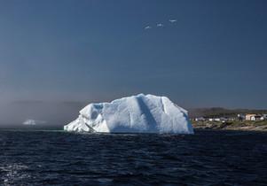 Newfoundland Seascapes