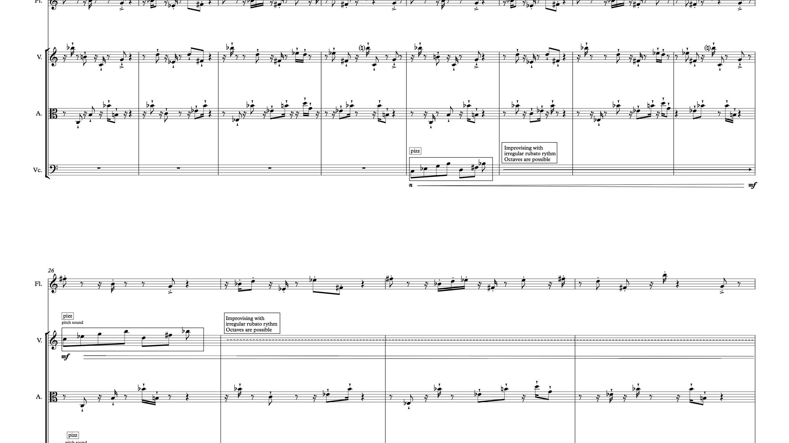 Le Bruit du Silence - Full Score4