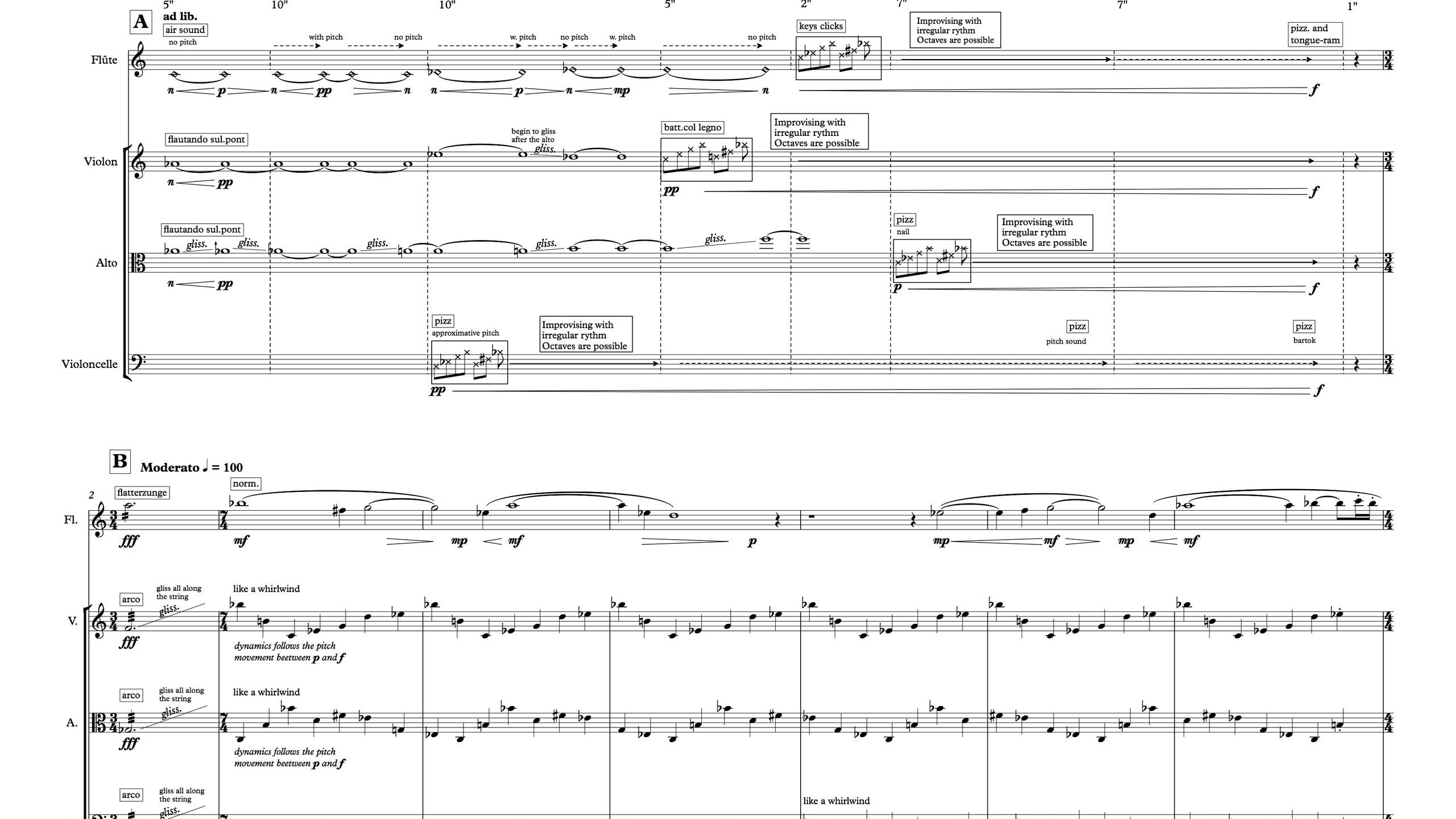 Le Bruit du Silence - Full Score2