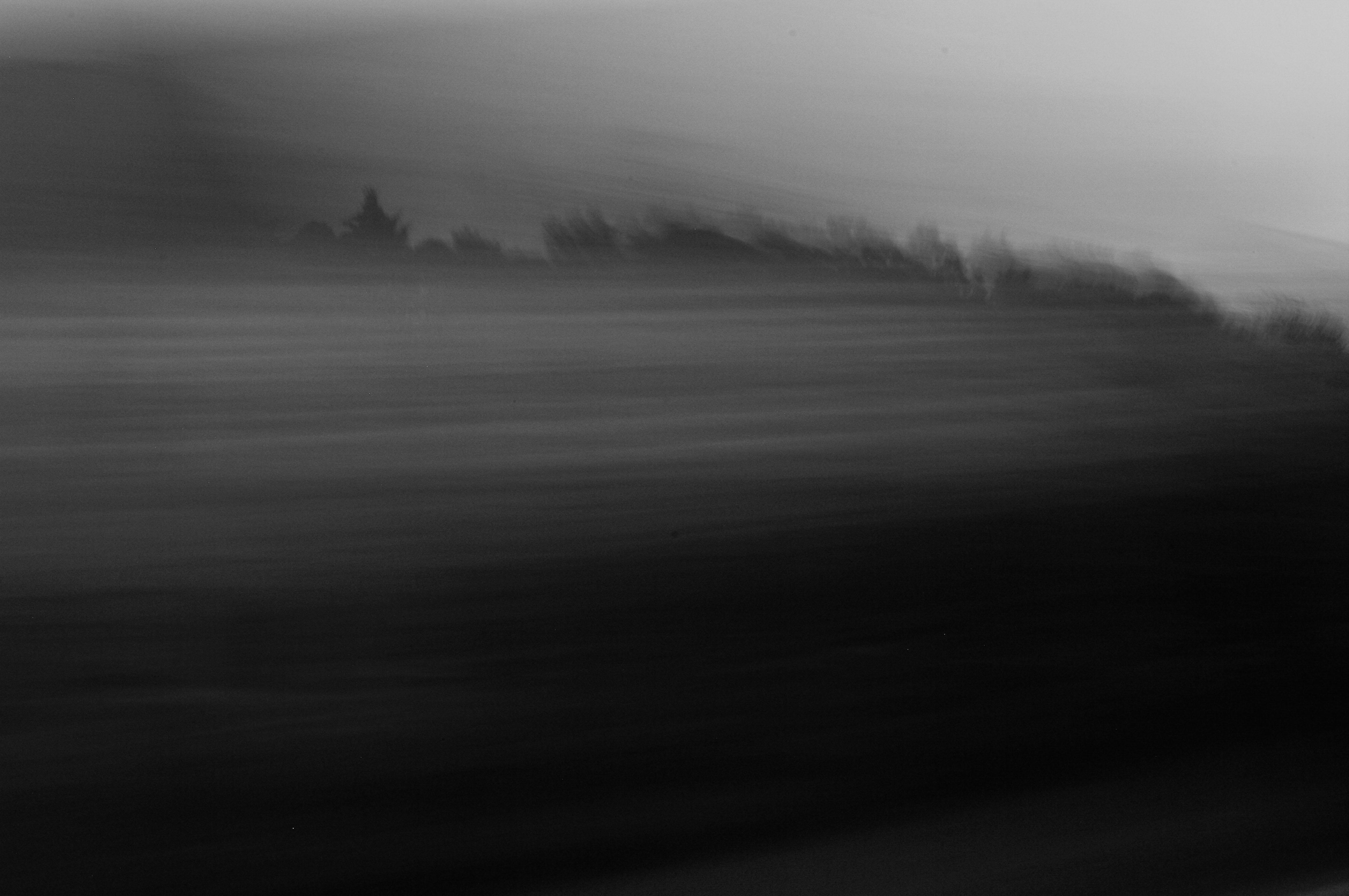 2017-02-15 myPhotos_1019