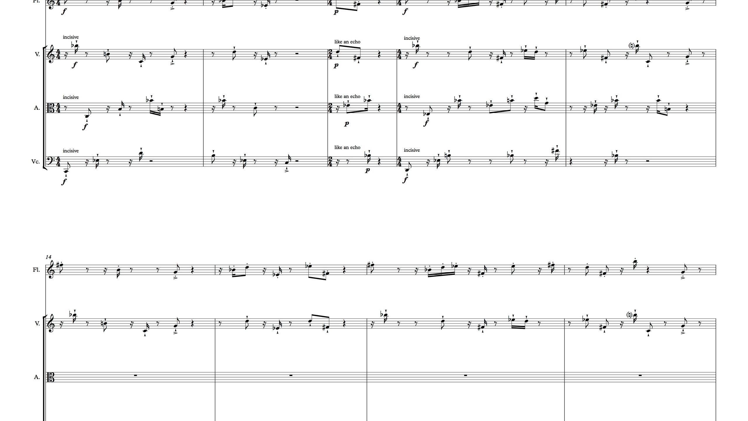 Le Bruit du Silence - Full Score3