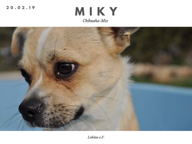 miky(1).png