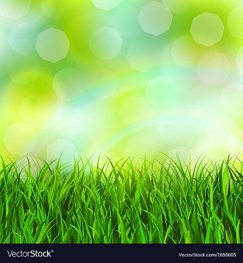 grass-background-vector-1656605.jpg
