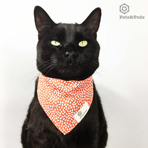 Cat and Small Dog bandana