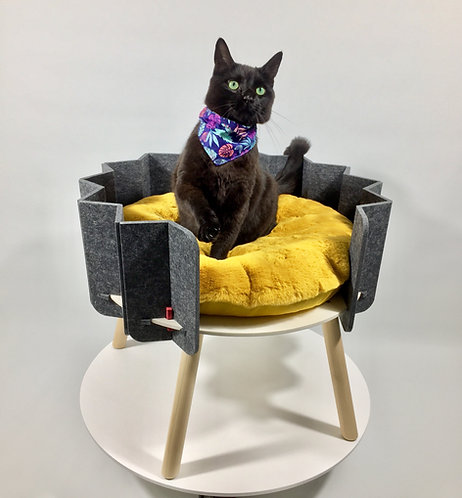 BISCUIT elevated pet bed (Long Legs)