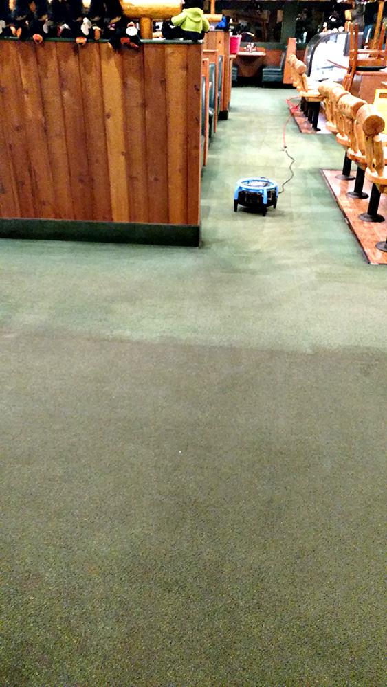 Contrast of carpet