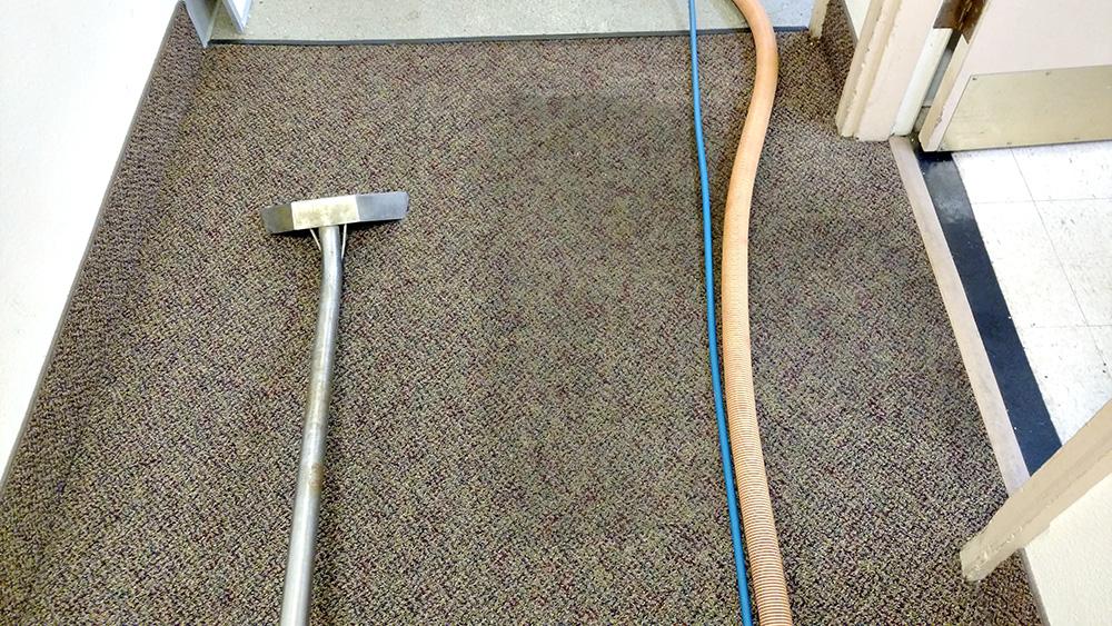 Dirt and Clean Carpet