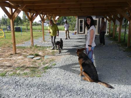 Cours de groupe educateur canin.JPG