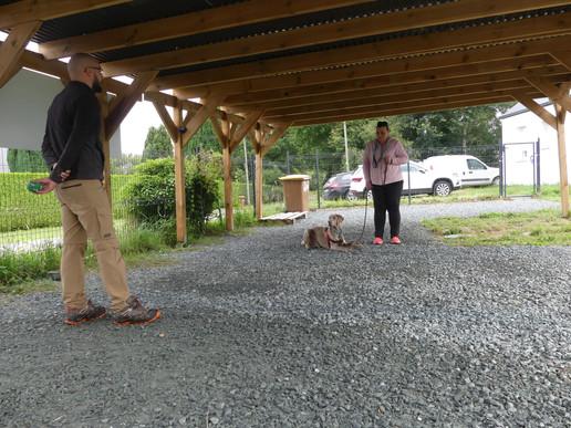 Educateur canin Redon.JPG