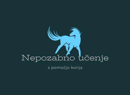 Kaj je razlika med terapijo s konji in učenjem življenjskih spretnosti s pomočjo konja?