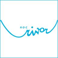 Met behulp van projectmanagement en projectondersteuning aan ROC Rivor is de implementatie van het leermanagementsysteem gerealiseerd.