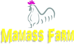 mamass farm. poultry cages in nigeria, buy poultry cages in nigeria, nigerian poultry farmers.