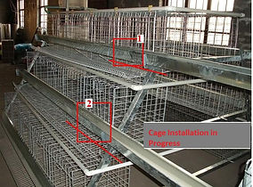 Poultry/battery cages and Agro-equipments in nigeria, farms in nigeria, chickens cages in lagos nigeria, livestock farming in nigeria, lagos farm, farm in lagos, buy poultry cage in lagos, buy battery cage in lagos, installation of poultry cages in lagos,