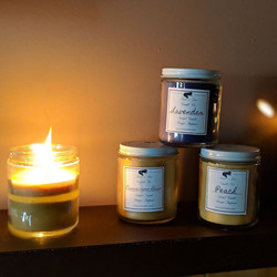 Trixie's Den Candle Company