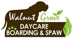 Walnut Grove Daycare, Boarding, Spaw