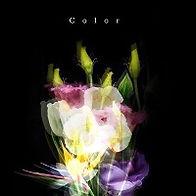 Color_edited.jpg