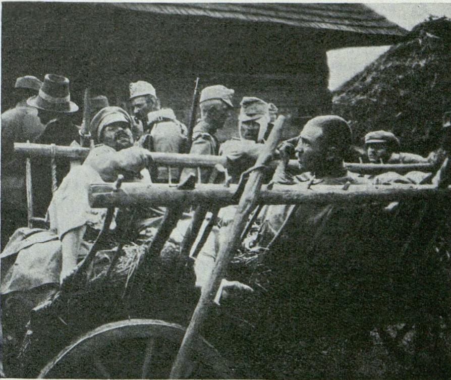 Transport rannych