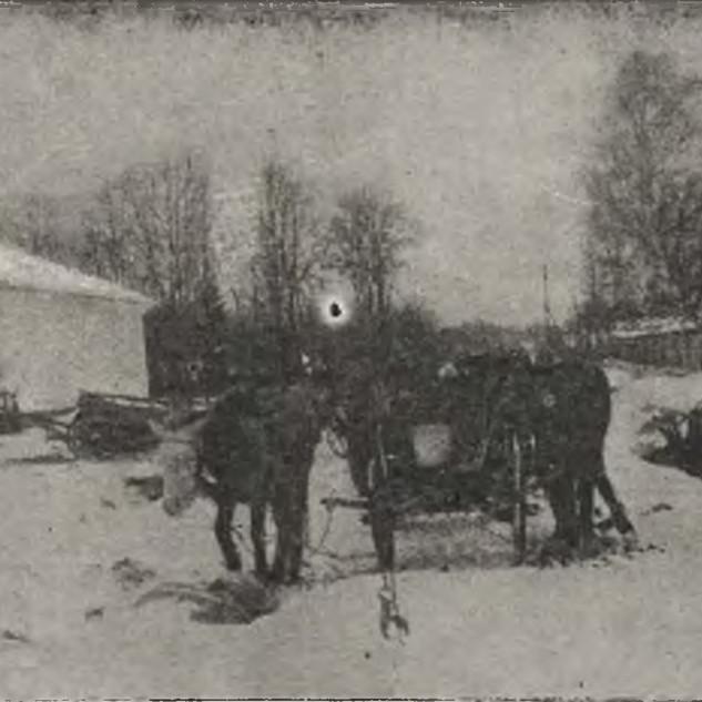 Żużel k. Bełza, po walce z Ukraincami, 1919.