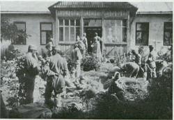 Szpital w Liskach.