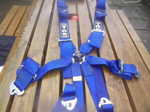 6 Point TRS Fia Seat Belts.