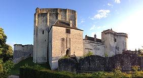Château_de_Loches_(8859399906).jpg