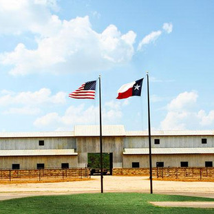 Commerical Equestrian Facility