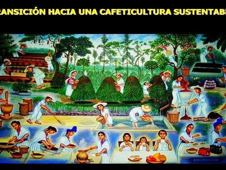 国策で「いのちの種をまく」森林農業を推進ーメキシコ・トセパンに学ぶ