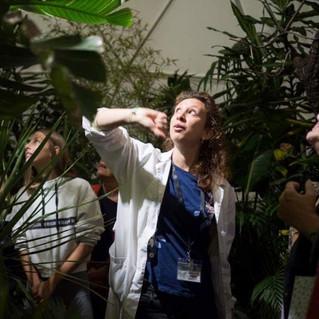 Biosfera tropicale a PetsintheCity