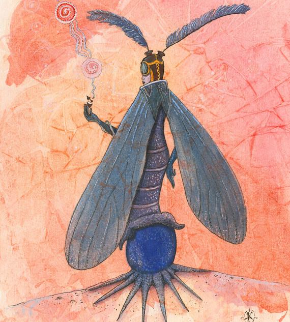 Navigator Moth