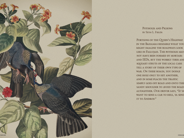 Read my Story Potholes & Pigeons from the Birdhunting issue of Strung magazine in the link below.