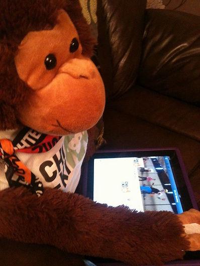 Cecil The Chi-Ki Monkey
