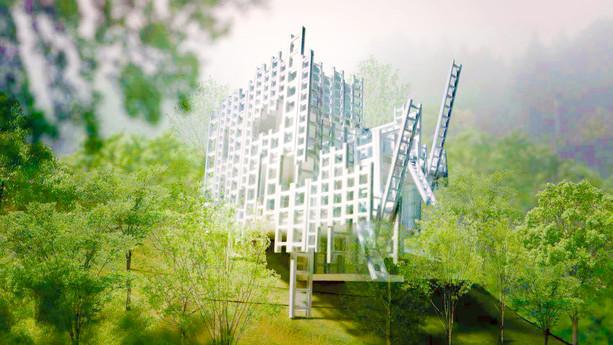 ハシゴの家 Ladder House