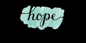 1080 x 540 Hope-Medical Logo.png