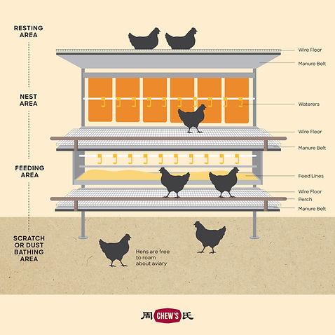 Aviary System