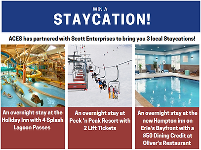 staycation graphic.PNG