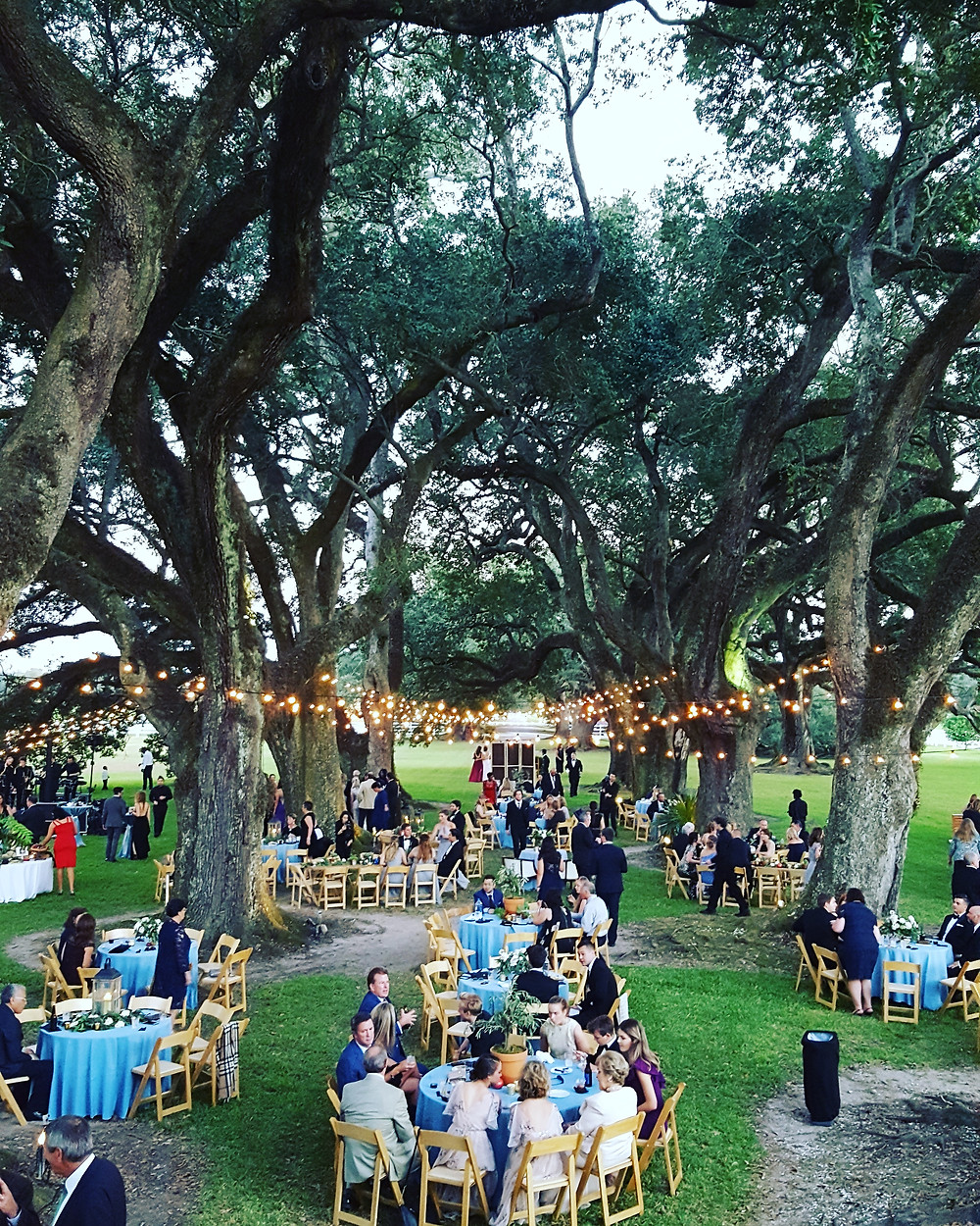 Reception under the oaks at Stella Plantation