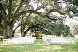 wedding (54 of 876)