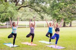 Yoga under the Oak Trees